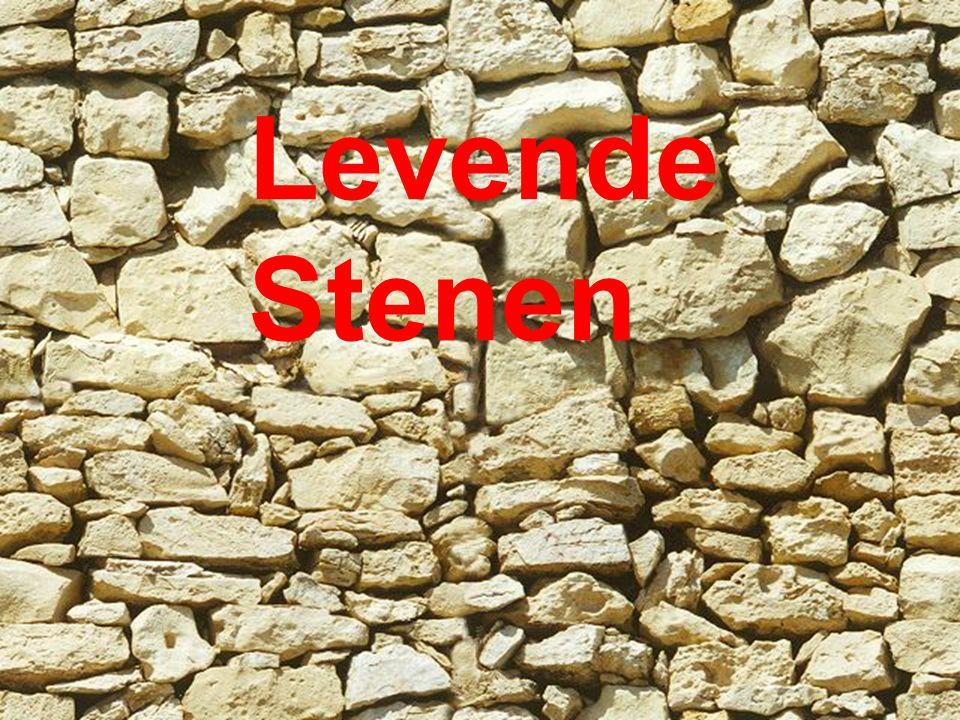 Levende Stenen