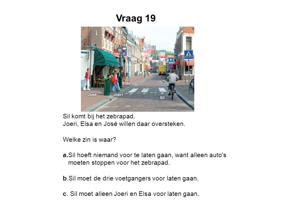 Vraag 19 Sil komt bij het zebrapad. Joeri, Elsa en José willen daar oversteken. Welke zin is waar