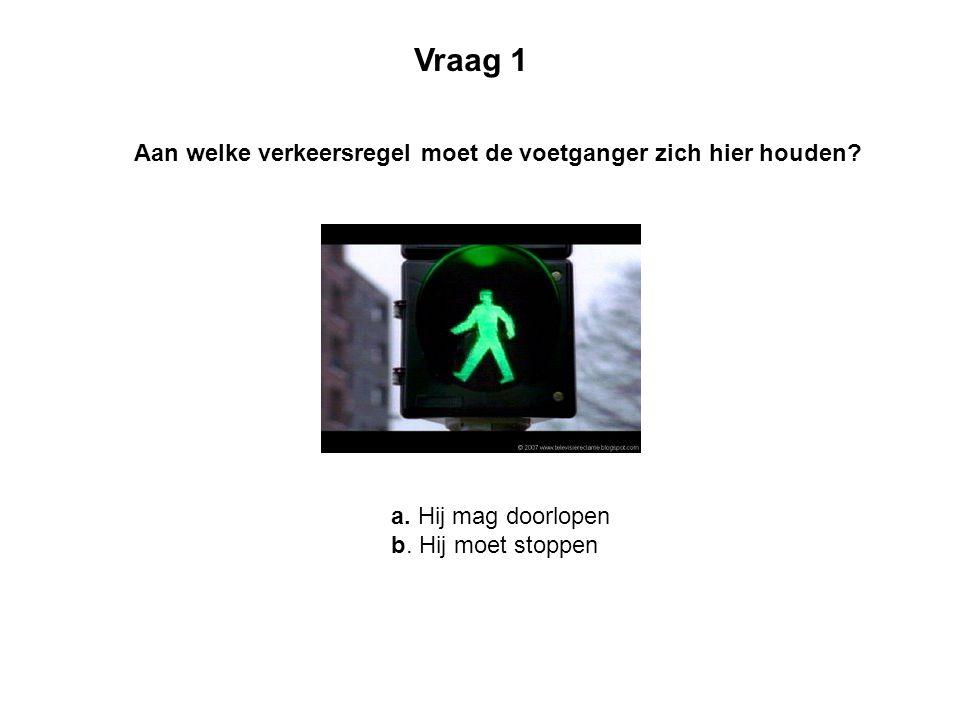 Vraag 1 Aan welke verkeersregel moet de voetganger zich hier houden