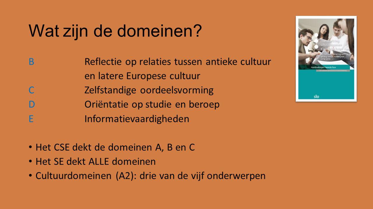 Wat zijn de domeinen B Reflectie op relaties tussen antieke cultuur