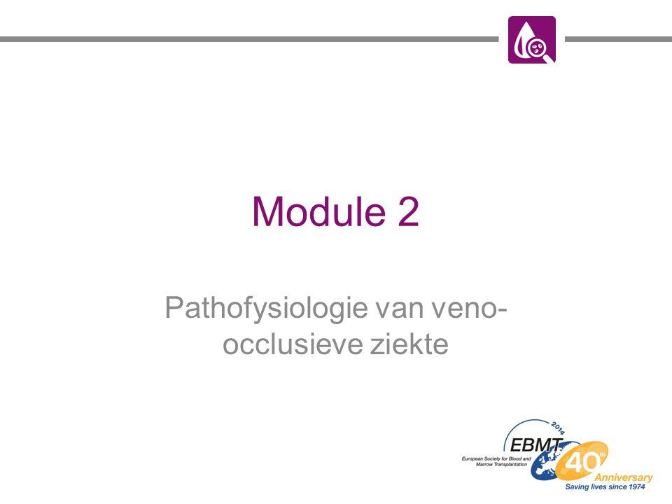 Pathofysiologie van veno-occlusieve ziekte