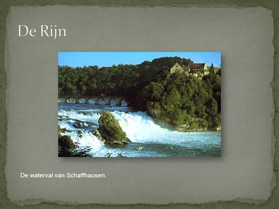 De Rijn De waterval van Schaffhausen.