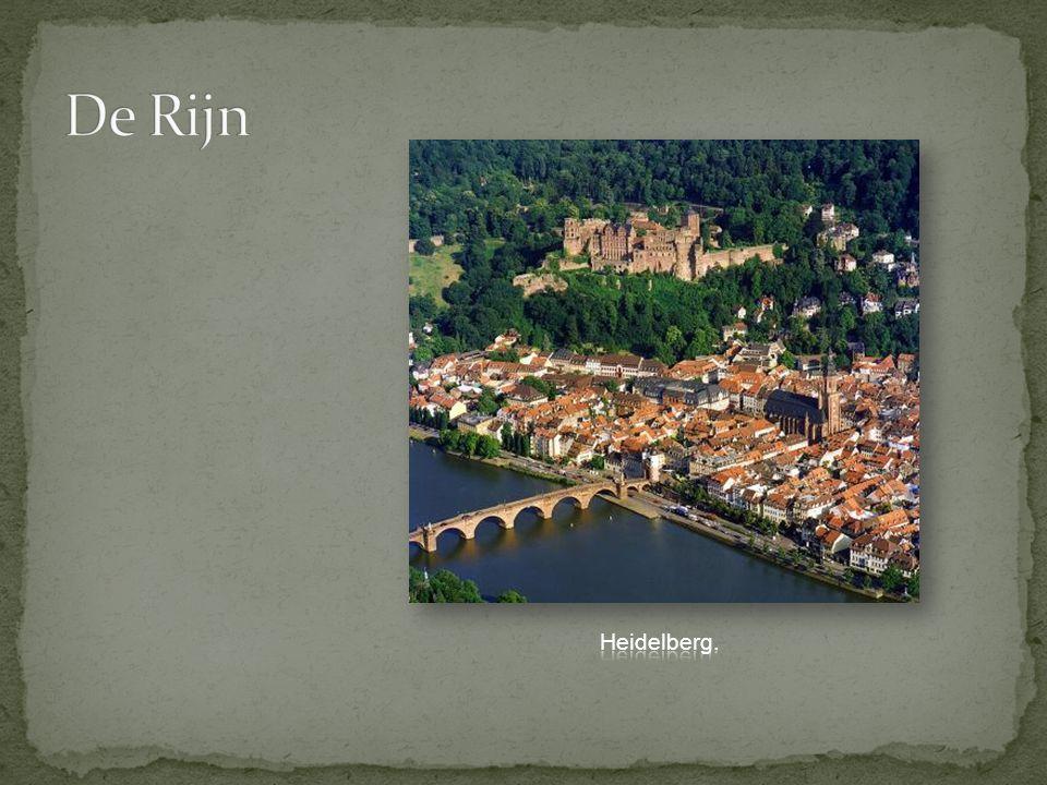 De Rijn Heidelberg.
