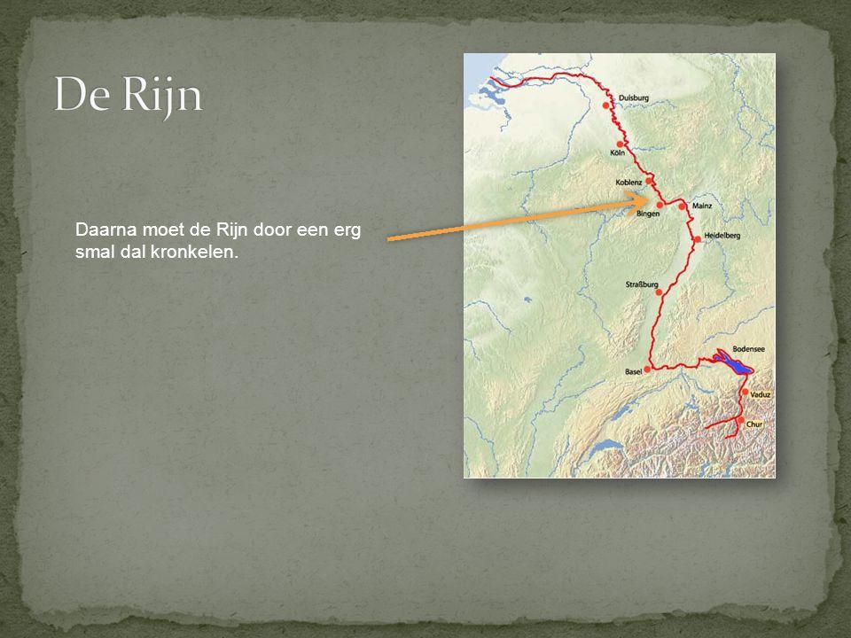 De Rijn Daarna moet de Rijn door een erg smal dal kronkelen.