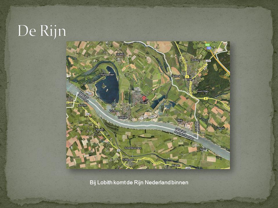 De Rijn Bij Lobith komt de Rijn Nederland binnen