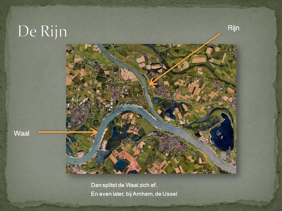 De Rijn Rijn Waal Dan splitst de Waal zich af.