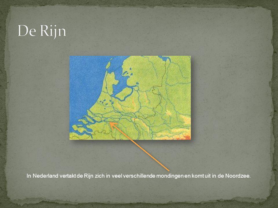 De Rijn In Nederland vertakt de Rijn zich in veel verschillende mondingen en komt uit in de Noordzee.