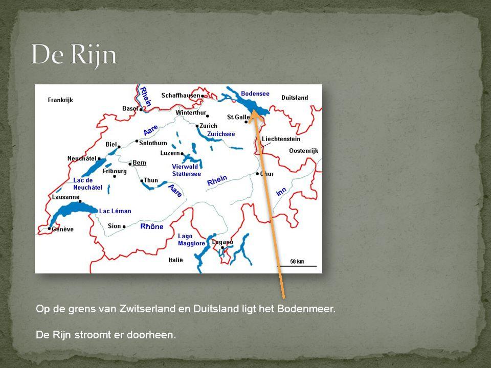 De Rijn Op de grens van Zwitserland en Duitsland ligt het Bodenmeer.