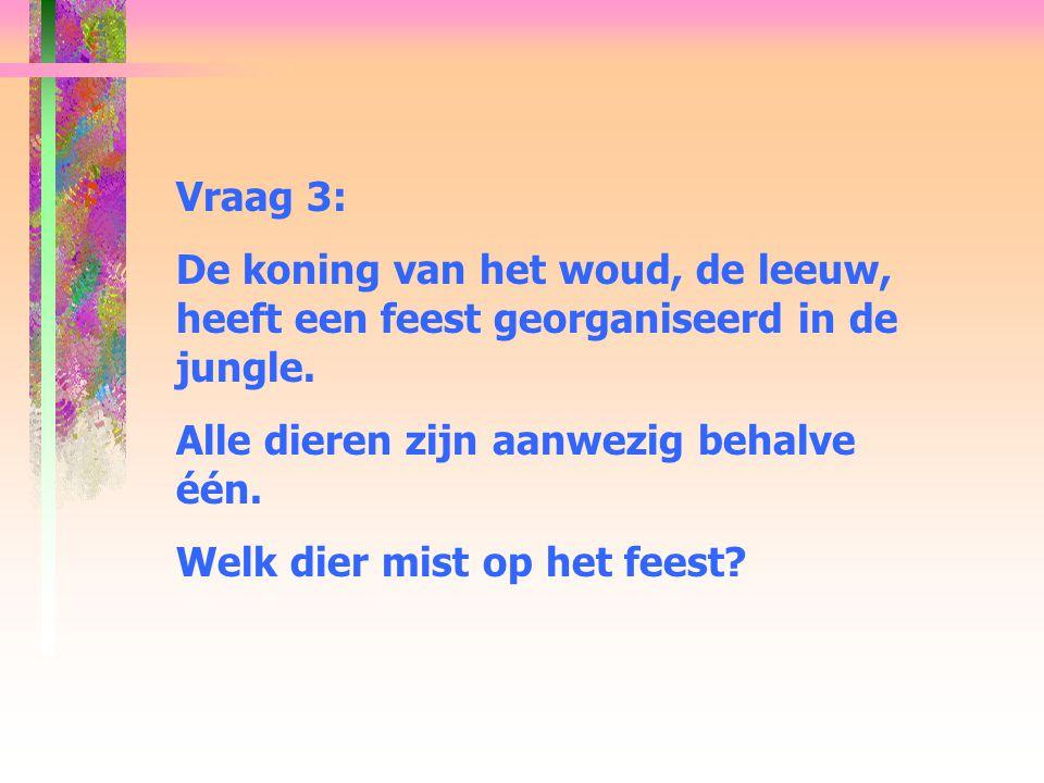 Vraag 3: De koning van het woud, de leeuw, heeft een feest georganiseerd in de jungle. Alle dieren zijn aanwezig behalve één.
