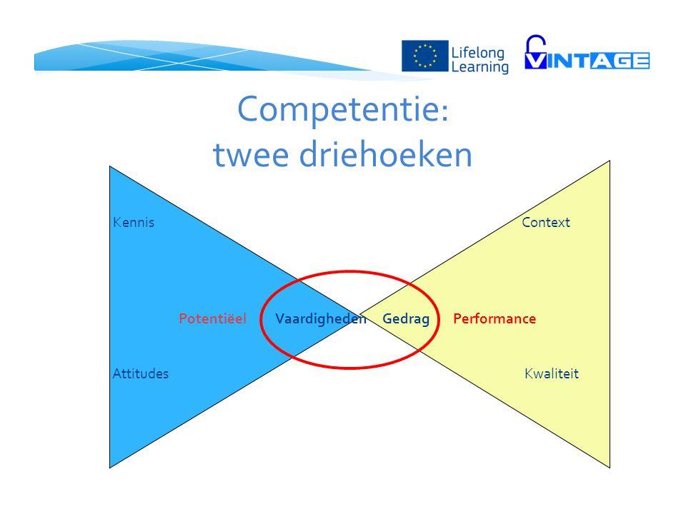 Competentie: twee driehoeken