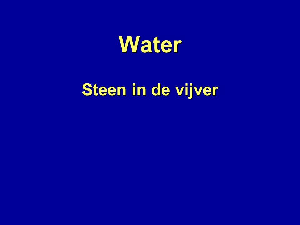 Water Steen in de vijver