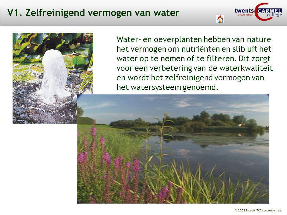 V1. Zelfreinigend vermogen van water