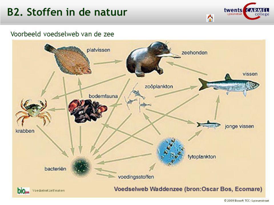 B2. Stoffen in de natuur Voorbeeld voedselweb van de zee