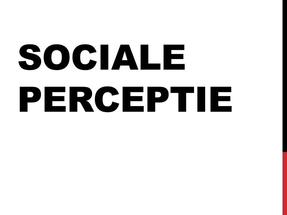 Sociale perceptie
