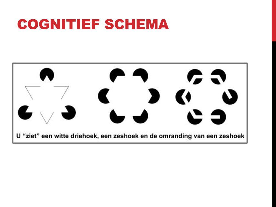 Cognitief schema
