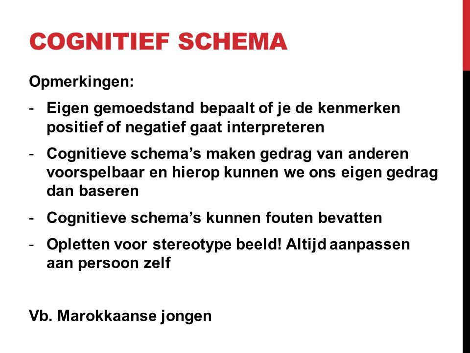 Cognitief schema Opmerkingen: