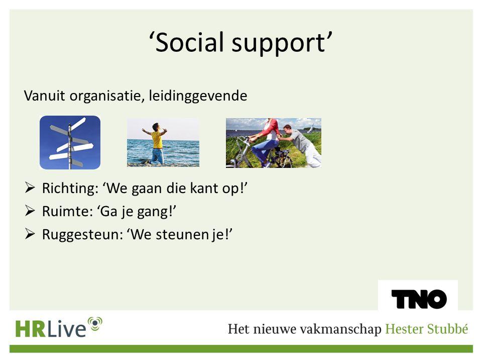 'Social support' Vanuit organisatie, leidinggevende