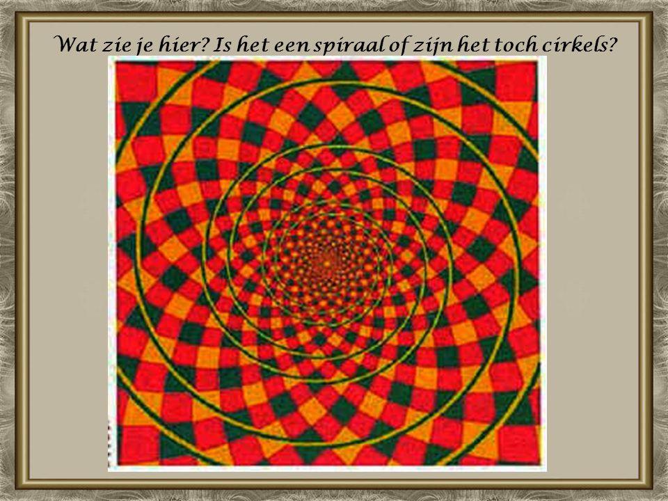 Wat zie je hier Is het een spiraal of zijn het toch cirkels