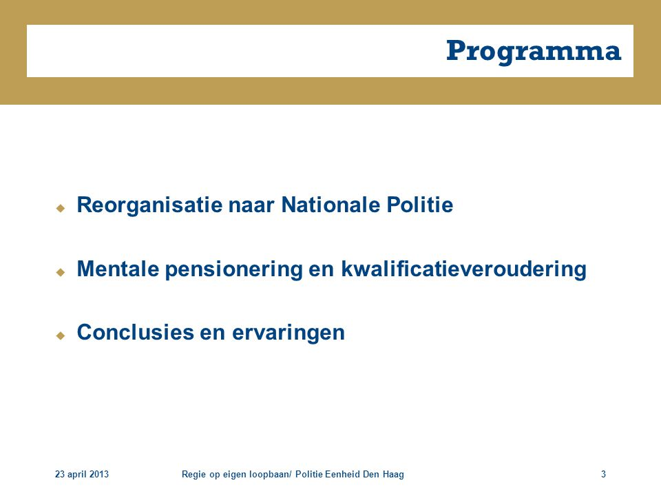 Programma Reorganisatie naar Nationale Politie