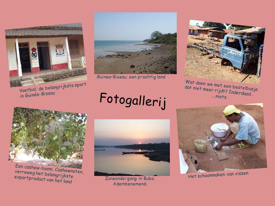 Fotogallerij Guinea-Bissau; een prachtig land