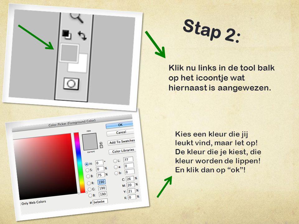Stap 2: Klik nu links in de tool balk op het icoontje wat hiernaast is aangewezen. Kies een kleur die jij leukt vind, maar let op!