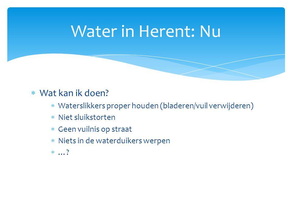 Water in Herent: Nu Wat kan ik doen