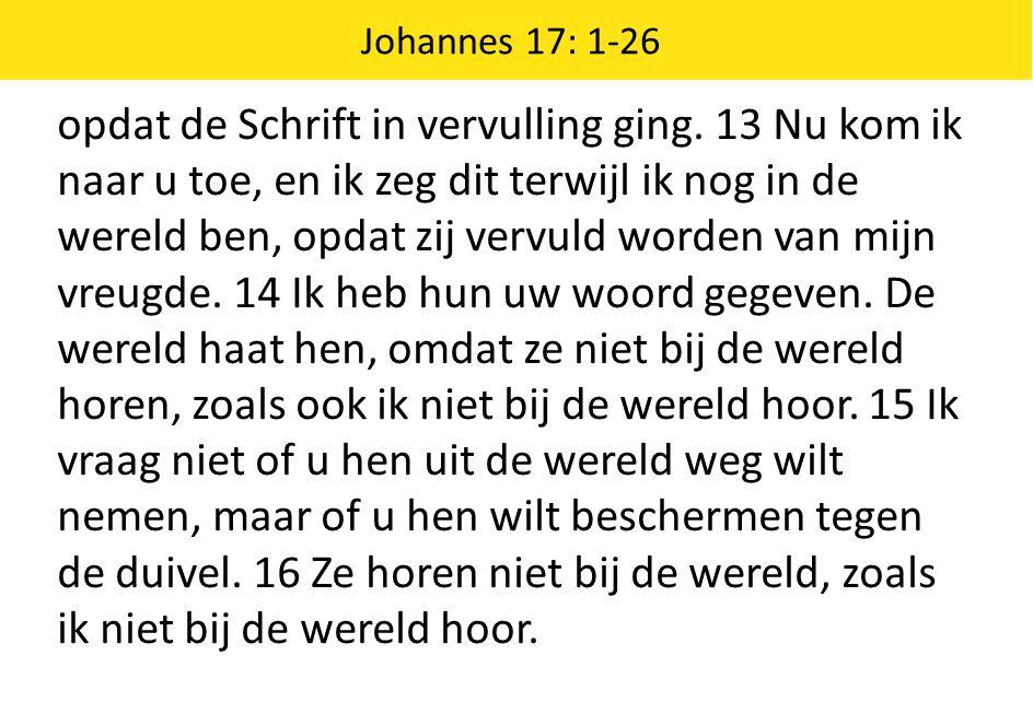 Johannes 17: 1-26