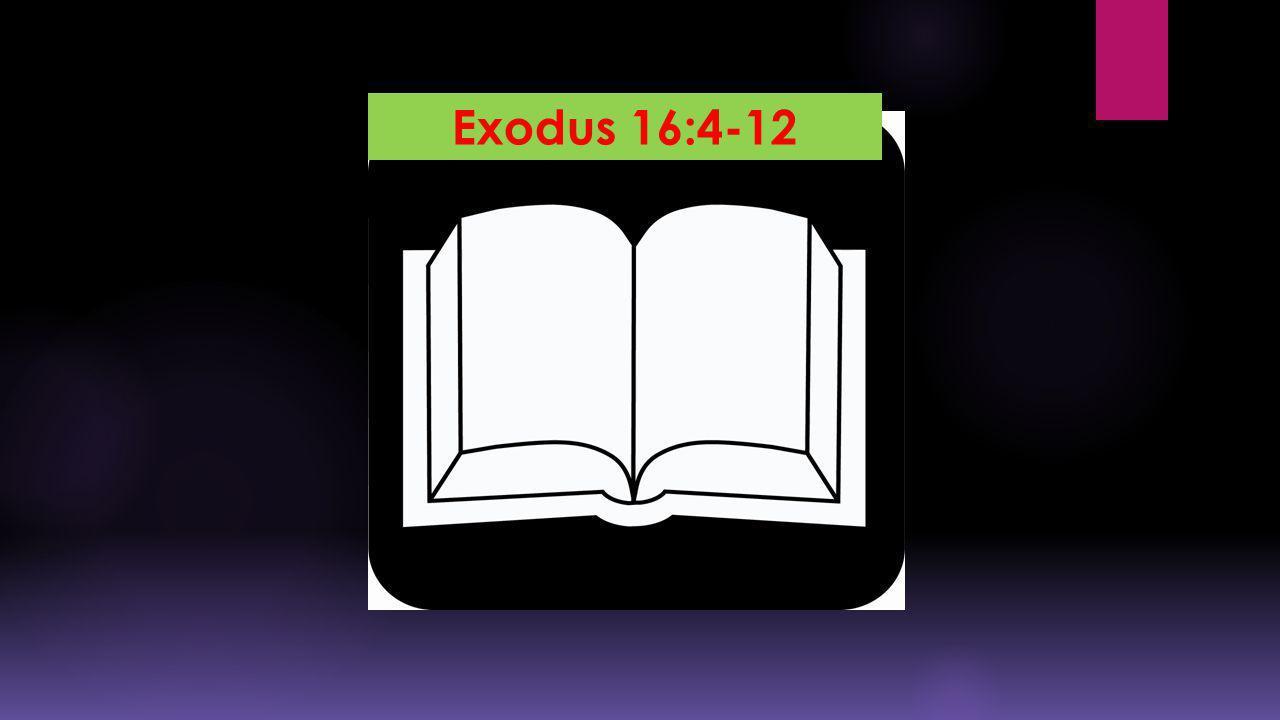 Exodus 16:4-12