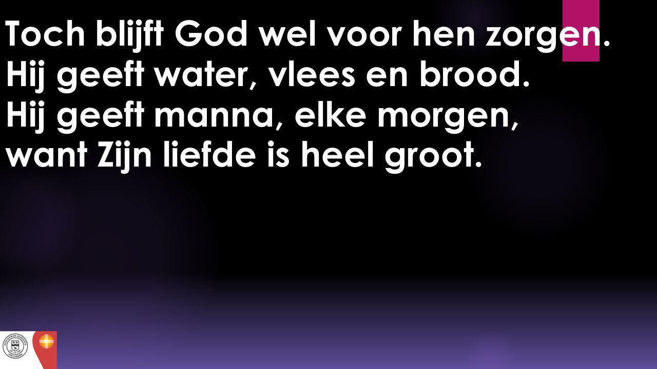 Toch blijft God wel voor hen zorgen. Hij geeft water, vlees en brood