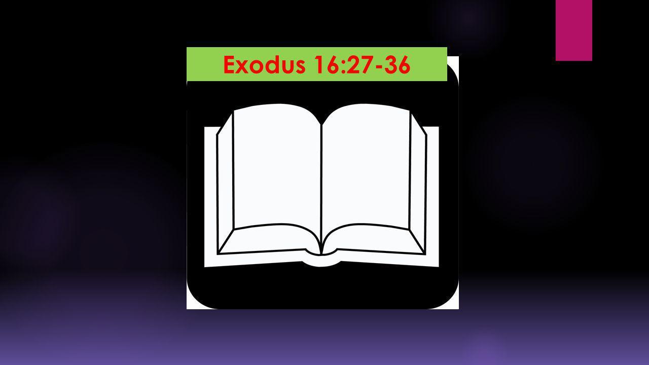 Exodus 16:27-36