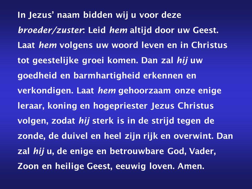 In Jezus' naam bidden wij u voor deze broeder/zuster: Leid hem altijd door uw Geest.