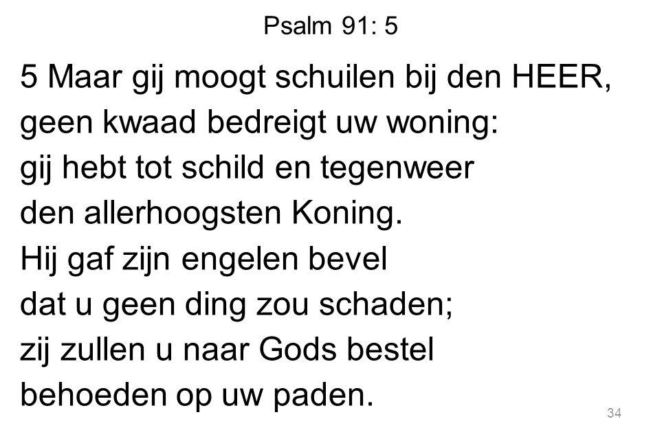 Psalm 91: 5
