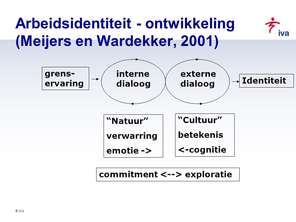 Arbeidsidentiteit - ontwikkeling (Meijers en Wardekker, 2001)