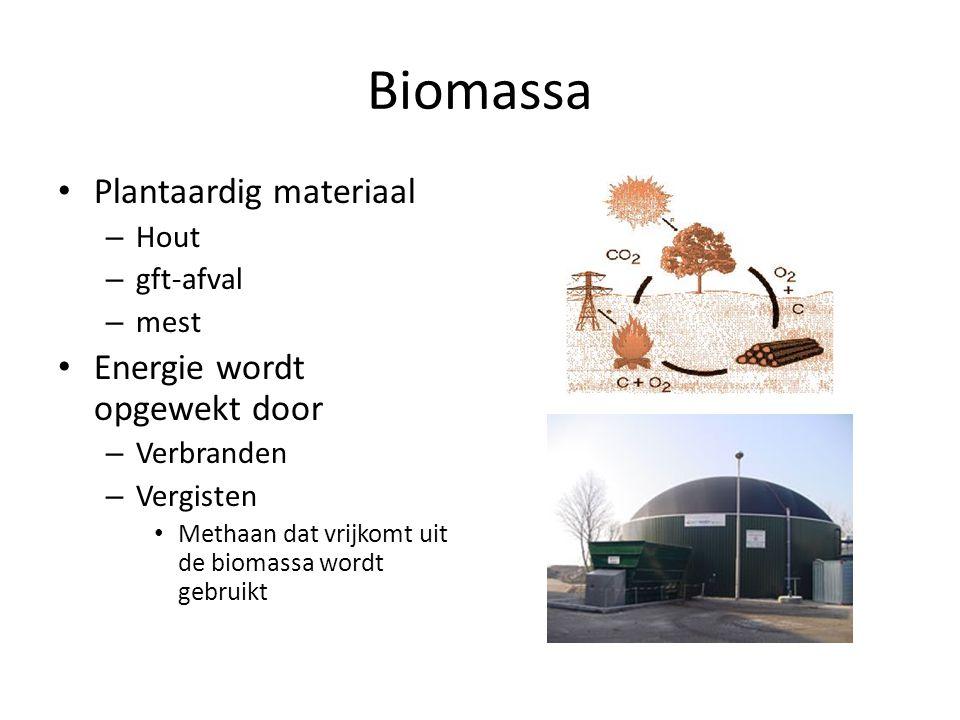 Biomassa Plantaardig materiaal Energie wordt opgewekt door Hout