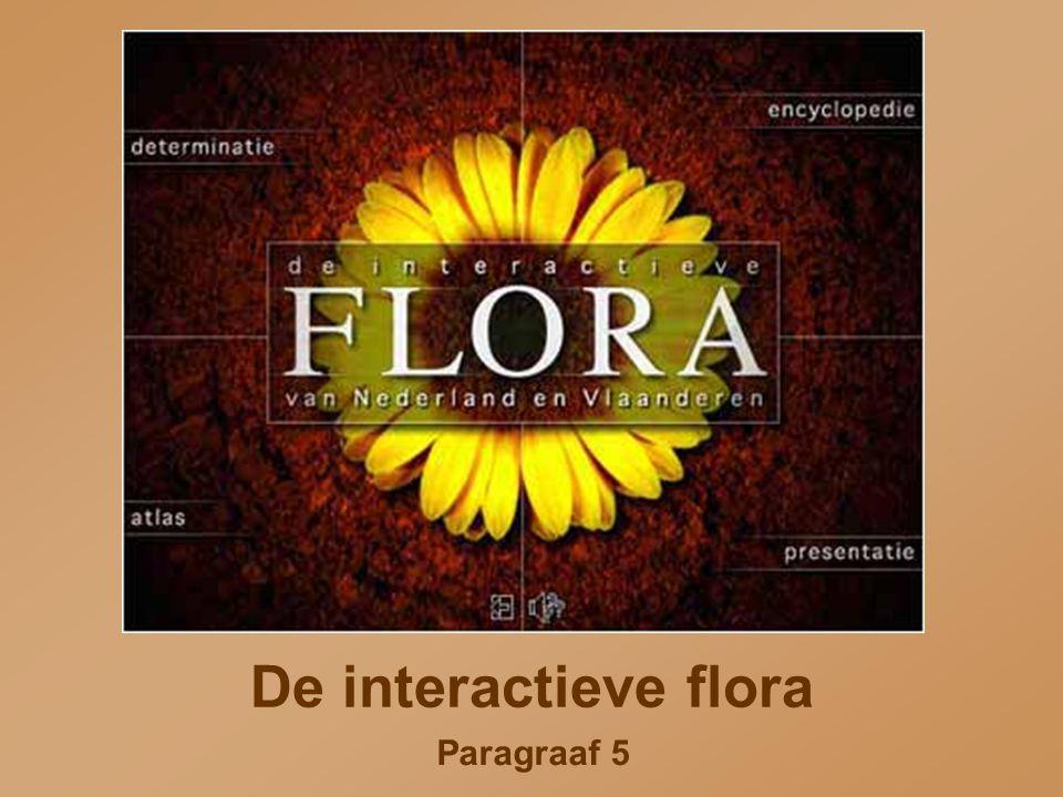 De interactieve flora Paragraaf 5