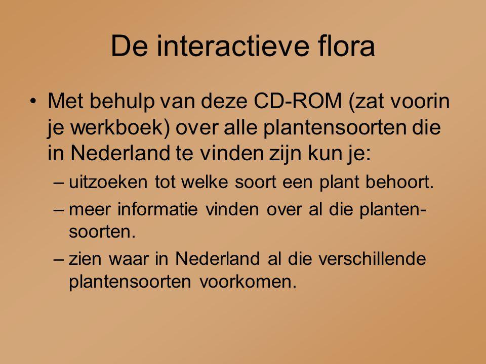 De interactieve flora Met behulp van deze CD-ROM (zat voorin je werkboek) over alle plantensoorten die in Nederland te vinden zijn kun je: