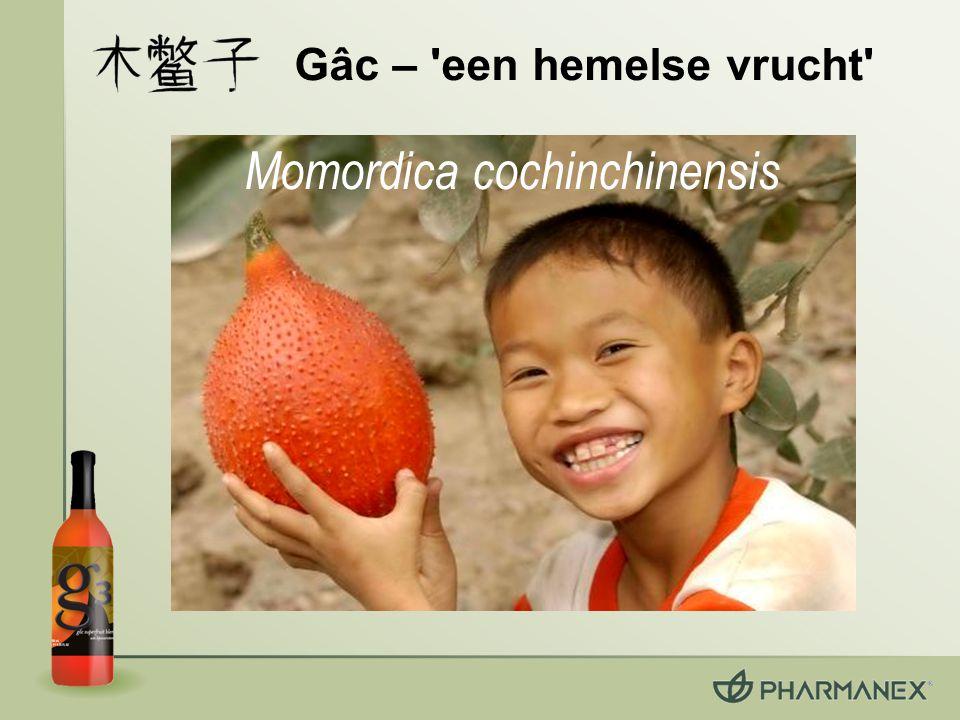 Gâc – een hemelse vrucht