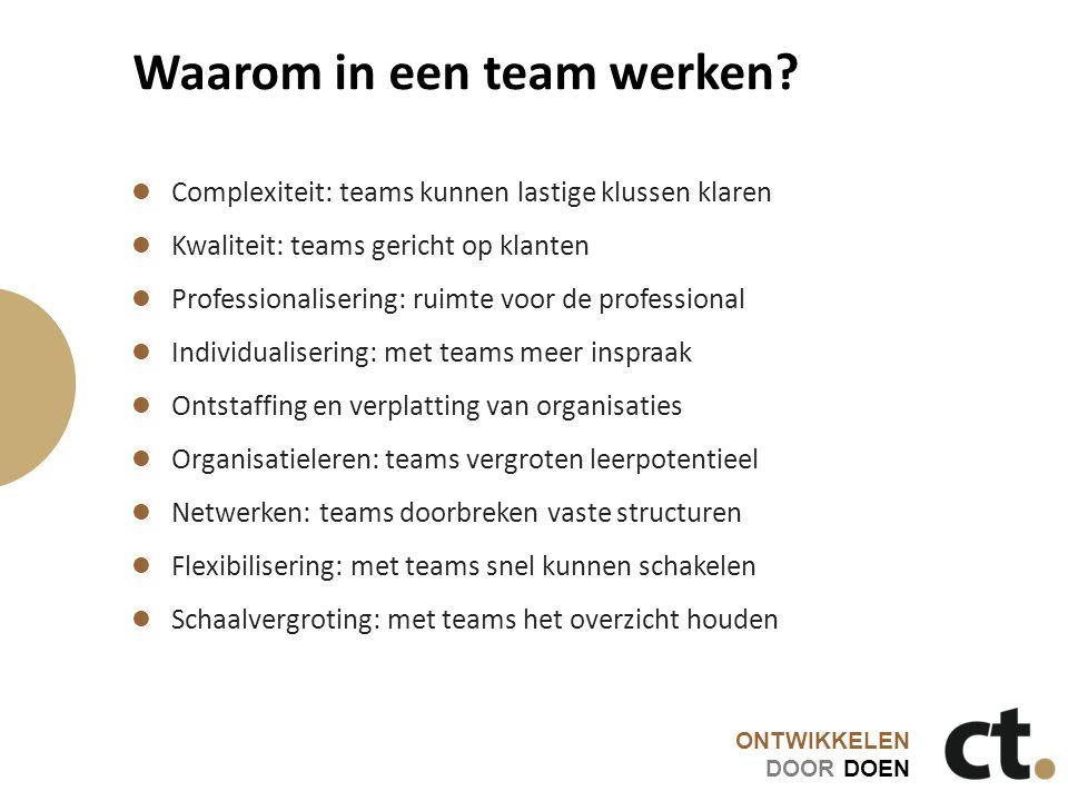 Waarom in een team werken