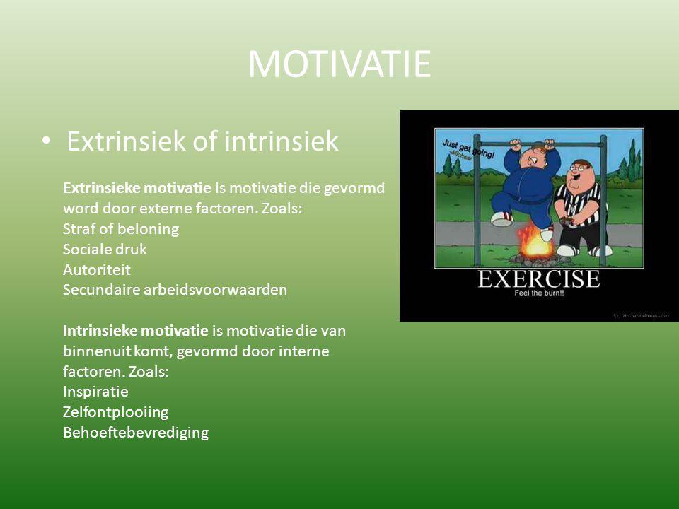 MOTIVATIE Extrinsiek of intrinsiek