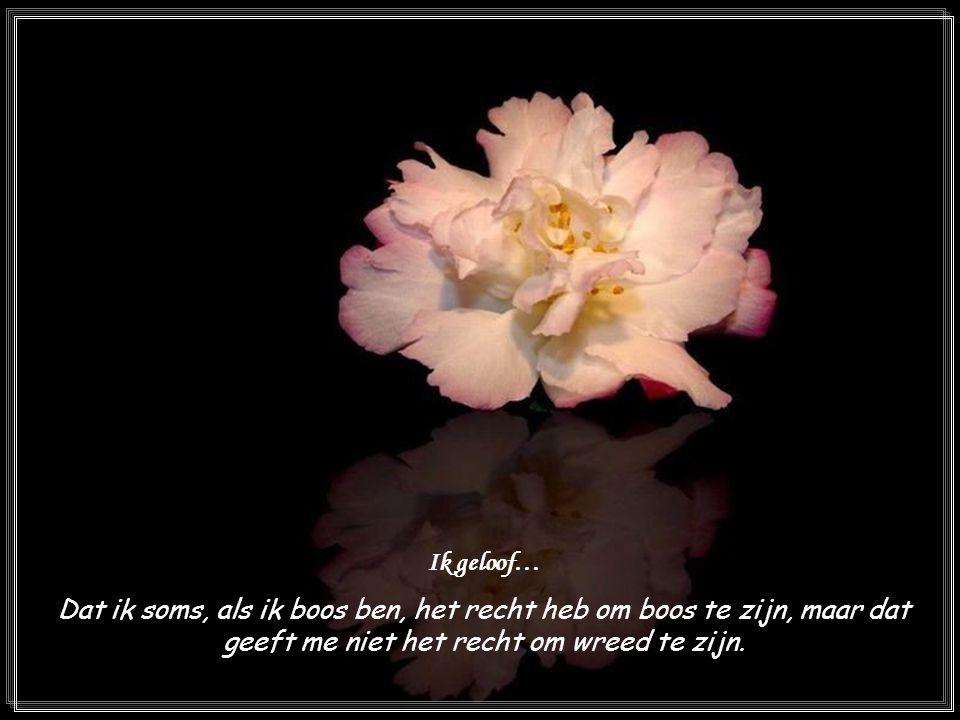 Ik geloof… Dat ik soms, als ik boos ben, het recht heb om boos te zijn, maar dat geeft me niet het recht om wreed te zijn.