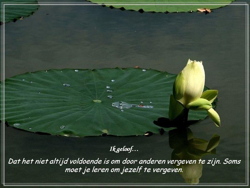 Ik geloof… Dat het niet altijd voldoende is om door anderen vergeven te zijn.
