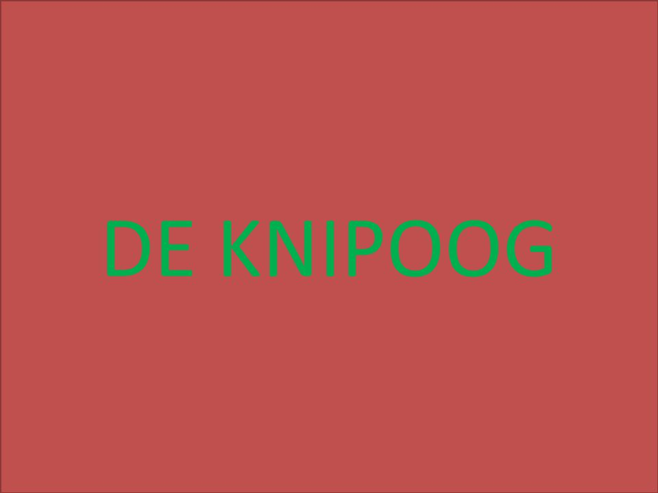 DE KNIPOOG over