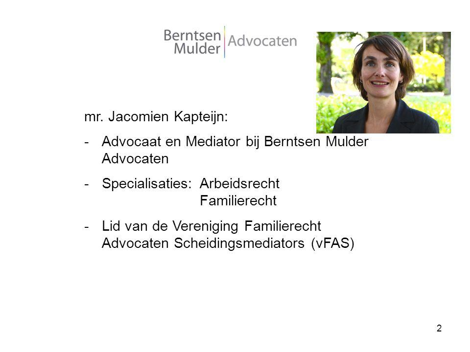 Advocaat en Mediator bij Berntsen Mulder Advocaten