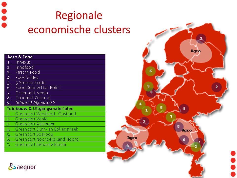 Regionale economische clusters