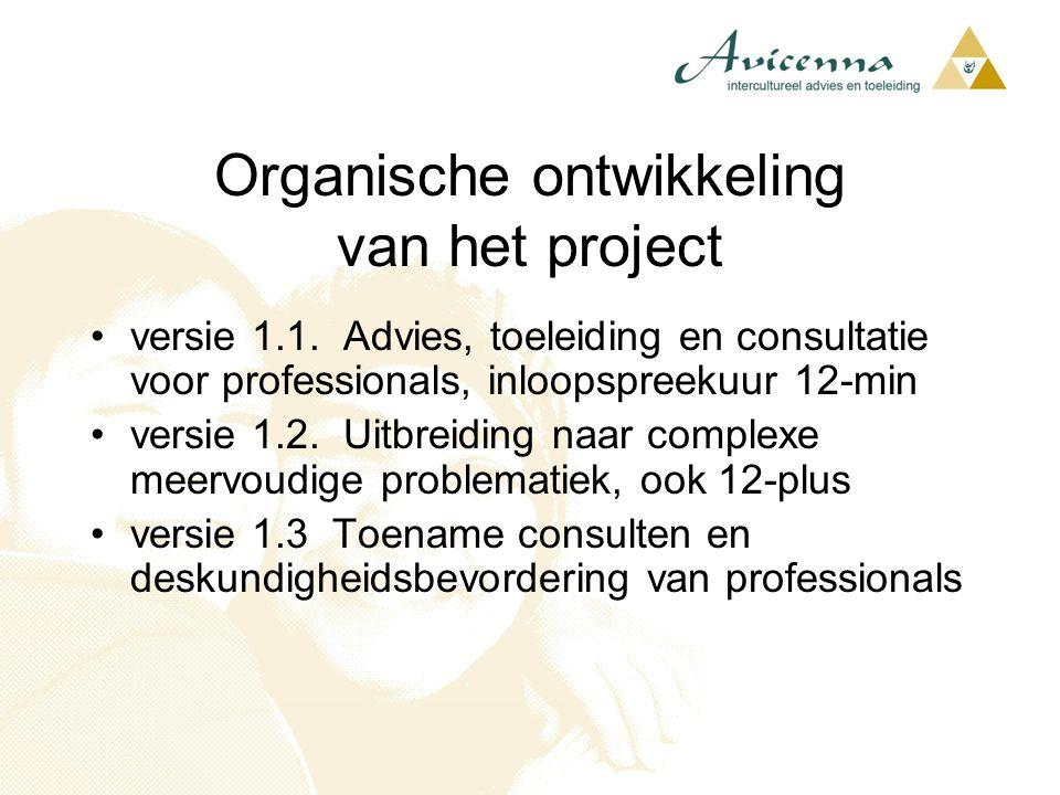Organische ontwikkeling van het project
