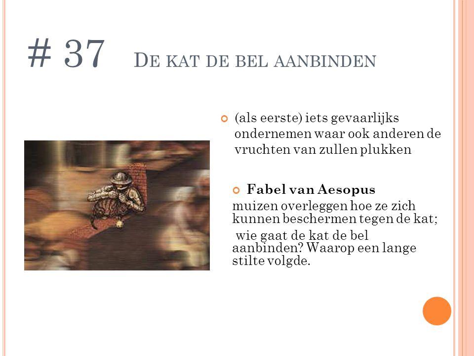 # 37 De kat de bel aanbinden