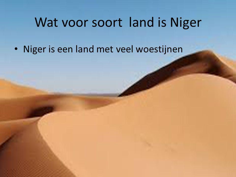 Wat voor soort land is Niger