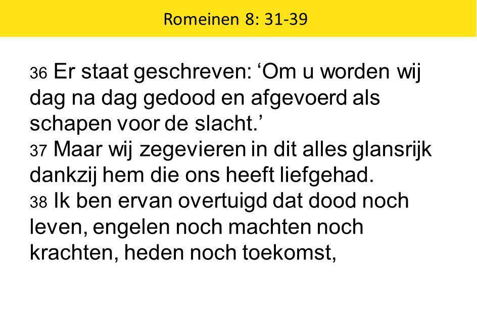Romeinen 8: 31-39 36 Er staat geschreven: 'Om u worden wij dag na dag gedood en afgevoerd als schapen voor de slacht.'