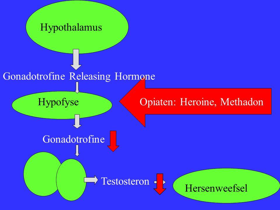 Opiaten: Heroine, Methadon