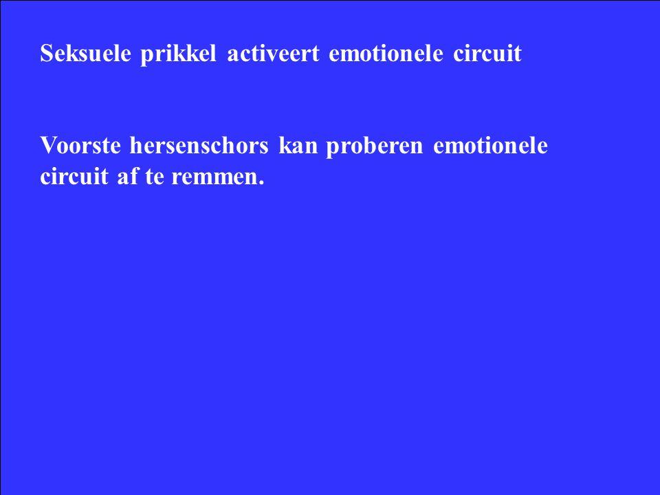 Seksuele prikkel activeert emotionele circuit